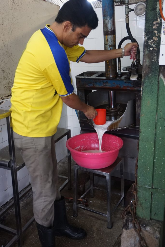 Kokosmelk markt