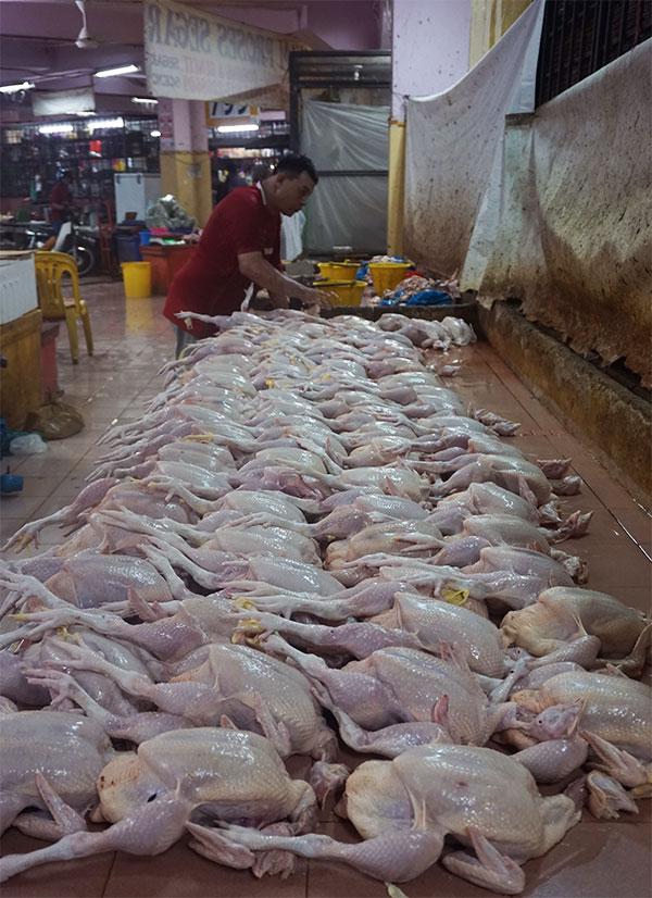 kippen markt kota bharu